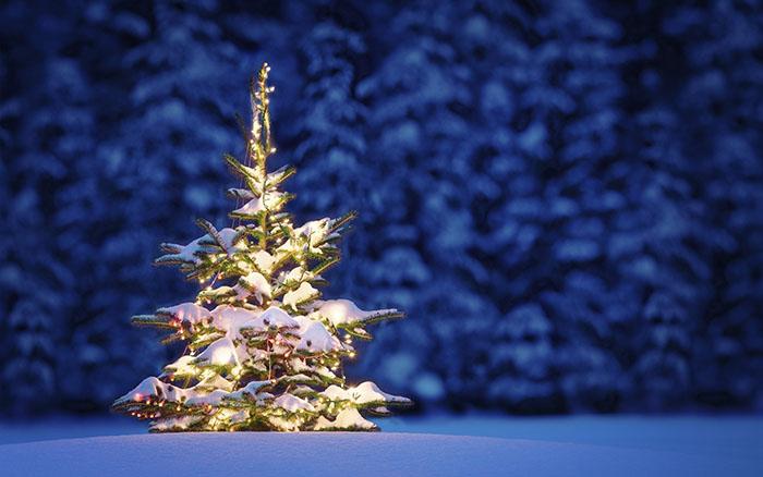 Счастливого Нового Года и Рождества!